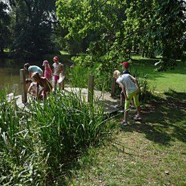 Mokřady a rybníky 2 - první stupeň